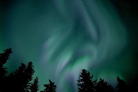 Alaska Judiciary Search Photos Northern Lights Dazzle Southeast Alaska