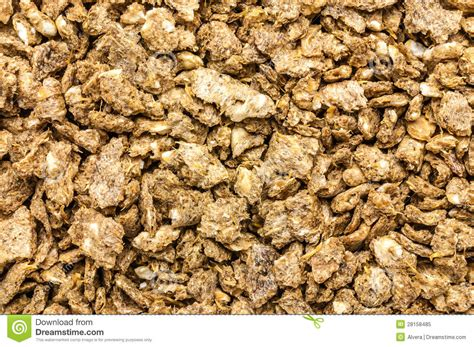 alimentazione maiale alimentazione maiale con la polpa di barbabietola secca