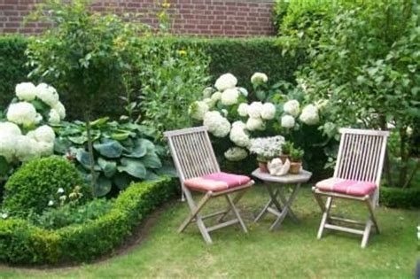 hortensie annabell buchs hosta garten - Zählt Terrasse Zu Wohnfläche