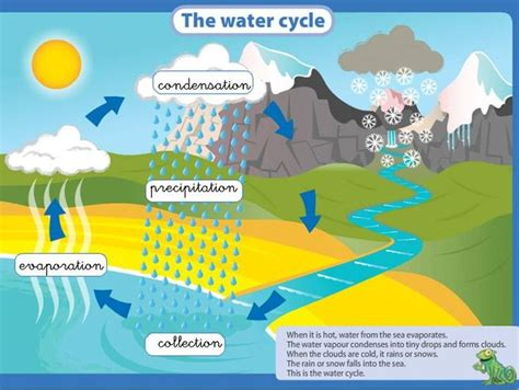 water cycle images 349 best images about water cycle projects ideas for