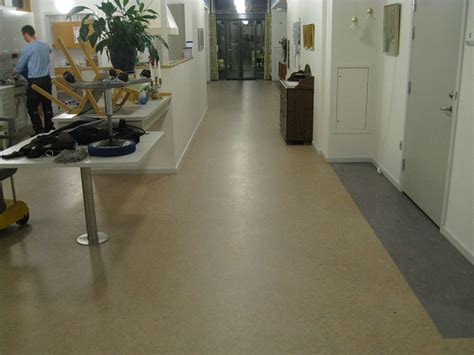 top 28 linoleum flooring maintenance linoleum flooring linoleum floor cleaning linoleum
