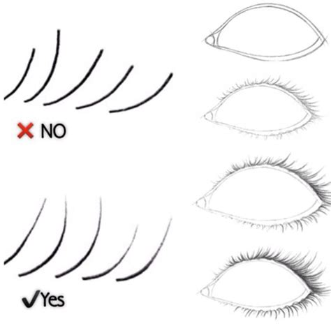 Drawing Eyelashes by How To Draw Lashes Useful Stuff Drawing