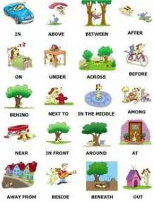 1000 images about perception on pinterest worksheets