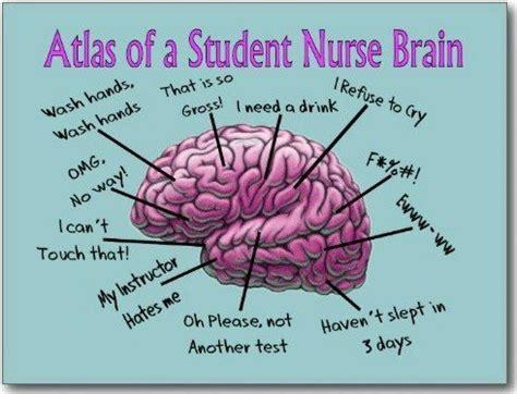 funny nursing student memes basic nursing skills google