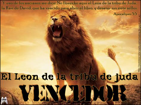 imagenes con leones cristianas postales cristianas el que ama mi alma el le 243 n de la