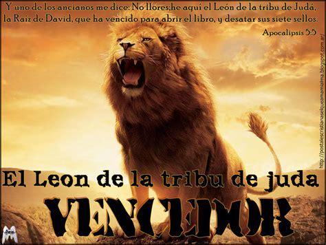 imagenes cristianas leon imagenes cristianas del leon de juda apexwallpapers com