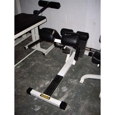 life fitness hyperextension bench hyper extension gymeez