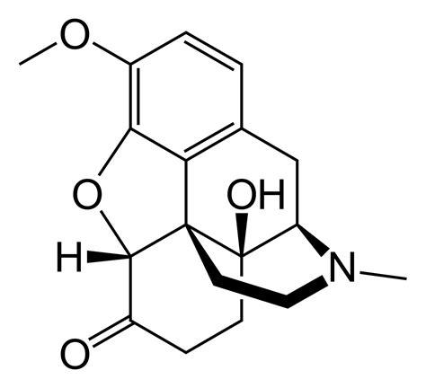 How To Detox From Dihydrocodeine by Oxycodone
