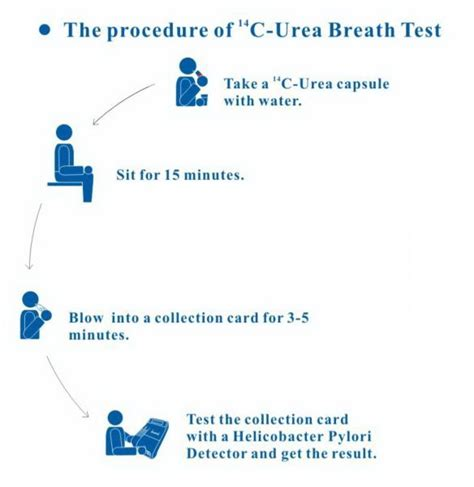 breath test helicobacter pylori helicobacter pylori h pylori rapid breath test kit