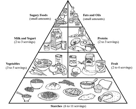 Coloring Food Group Pyramid Sketch Coloring Page Food Groups Coloring Pages
