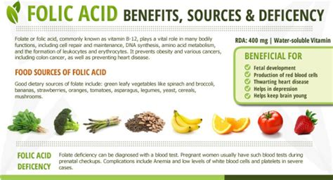 pictures 0f vegetables folic acid and its wide health benefits clinic of