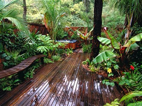 How To Create A Tropical Backyard by Tropical Garden Balcony Garden Landscape And Amenity Gardens Tropical And