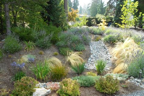 free guides and rebates for building a rain garden in