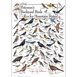 peterson s backyard birds of the rocky mtn states