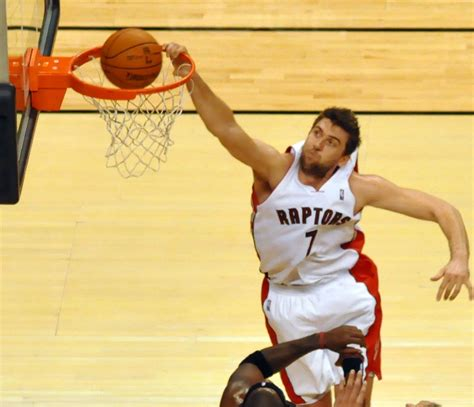 Mba Moscow Basketball Wiki by Andrea Bargnani Wikidata