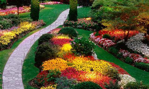 landscape design chicago landscape design chicago il arbor tree care