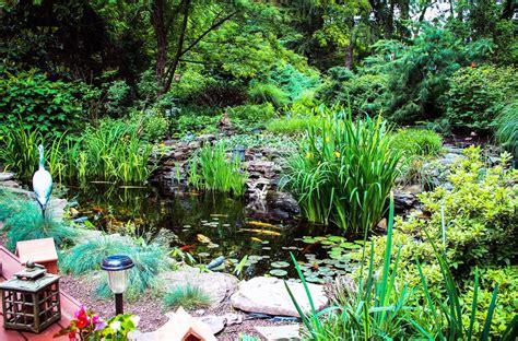 backyard fish pond maintenance 100 backyard fish pond maintenance backyard pond ideas for your landscape