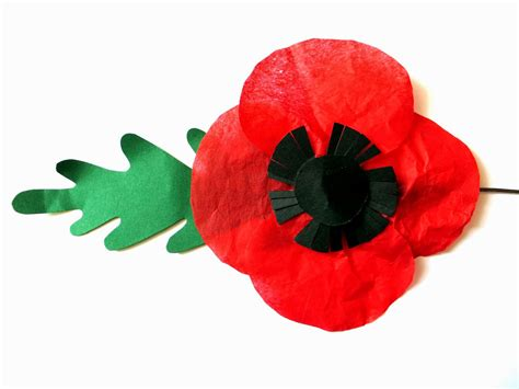 large poppy template clipart best