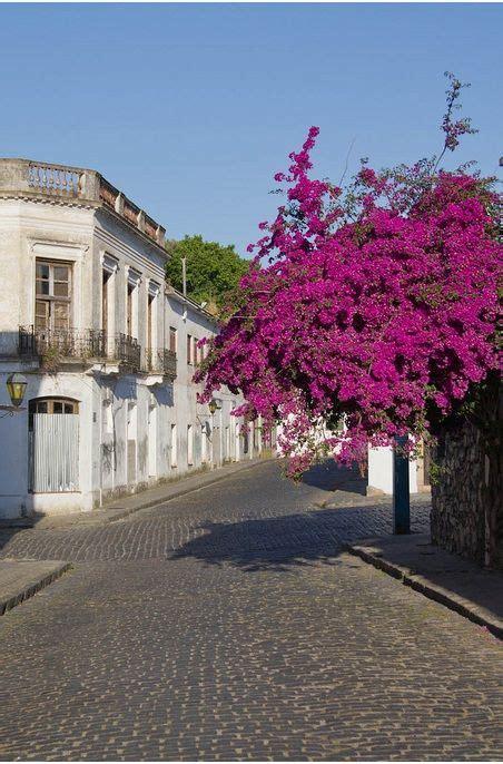 alfombra yute uruguay mejores 44 im 225 genes de colonia de sacramento uruguay en