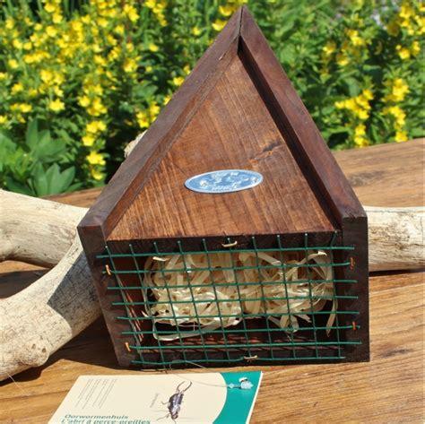 ohrwurmversteck selber bauen mit bauanleitung vogel und