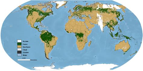 rainforest map researchers create global map of world s forests circa 1990