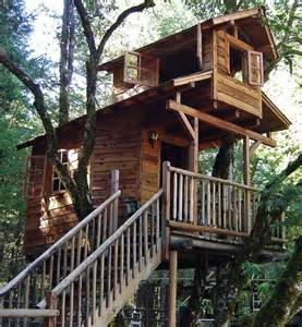 Ideas House by Amazing Cool Tree House Ideas Home Design