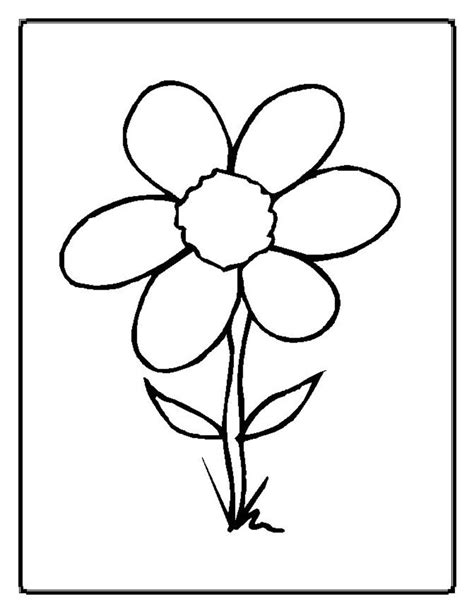 coloring page parts of a flower parts of a plant coloring page az coloring pages