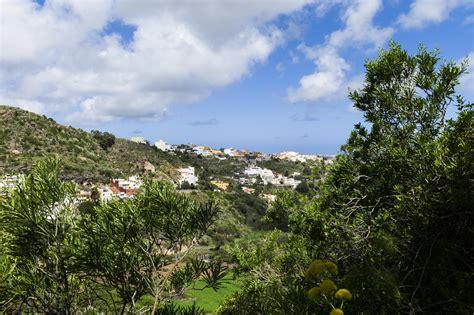jardin botanico gran canaria jard 237 n canario auf gran canaria einer der sch 246 nsten