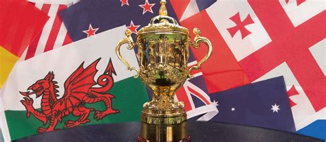 How To Do A Sweepstake At Work - the rugby world cup 2015 sweepstake kit rugbystore blog