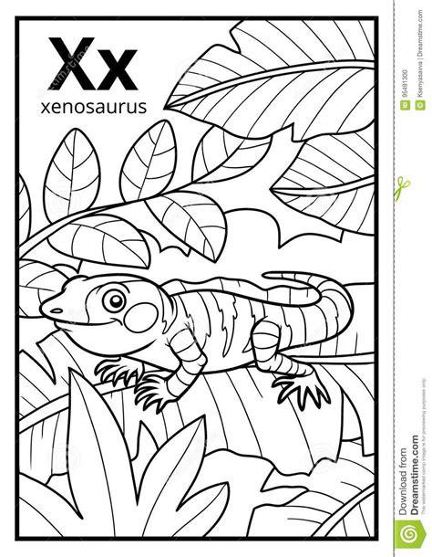[Mais selecionado] Anfibios Para Colorir - Imagens para
