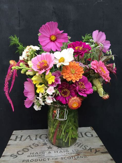 Bibit Benih Seeds Snapdragon Mix Bouquet Flower cut flower bouquet celosia cosmos sweet zinnia ammi strawflower snapdragon phlox