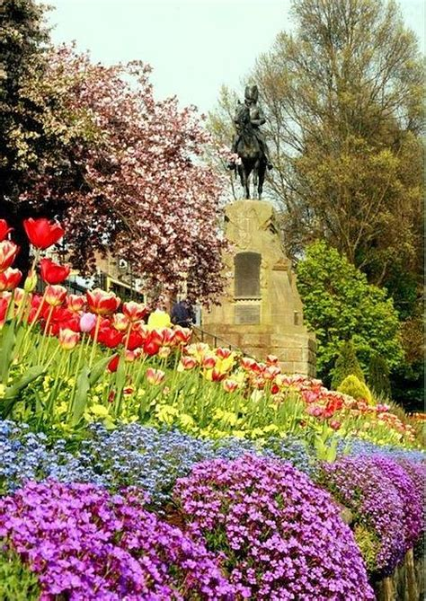 princess garden pyrography by lovella dagum