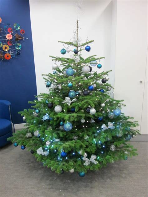blue and silver decorated christmas trees corporate trees flowers by flourish