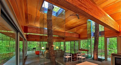 creative homes built around trees