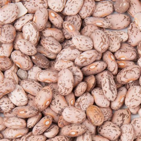 Pinto Bean Shelf by Dried Pinto Beans 20 Lb