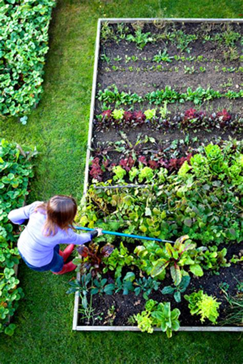 organic gardening horticulture section