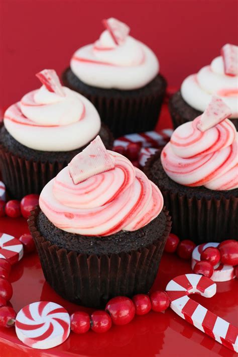 chocolate peppermint chocolate peppermint cupcakes glorious treats