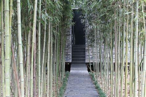 Lu Gantung Dari Bambu hutan bambu di tiongkok ini sembunyikan taman taman unik