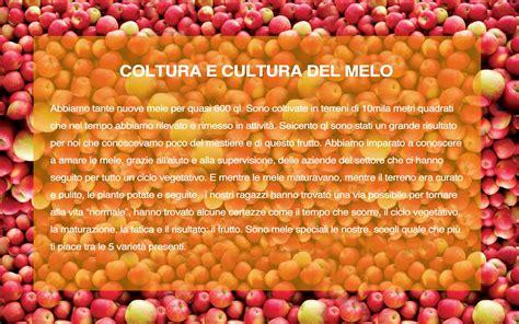 www il gabbiano it cooperativa sociale quot il gabbiano quot le mele