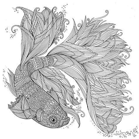 anti stress coloring book japan japanese fighting fish the aquarium colouring book rich on