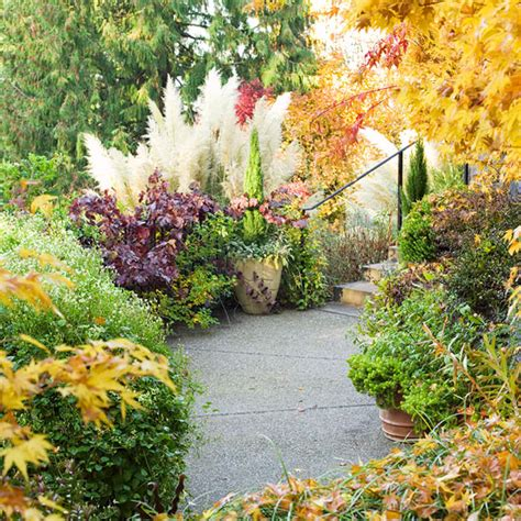 fall landscaping ideas fall landscaping ideas contrast lighting landscaping ideas and black lace elderberry