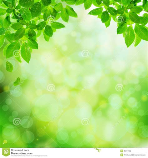 background design of nature image gallery nature background designs