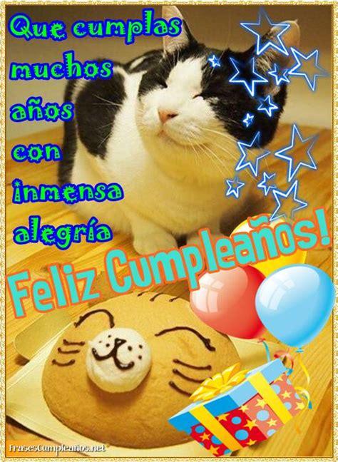 imagenes de gatos que digan feliz cumpleaños feliz cumplea 241 os con carita feliz