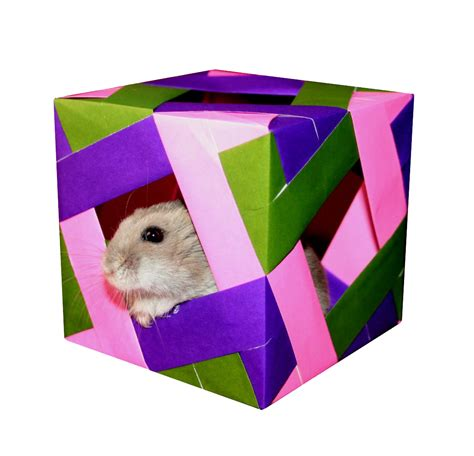 how to make an origami hamster origami maniacs origami cube 2
