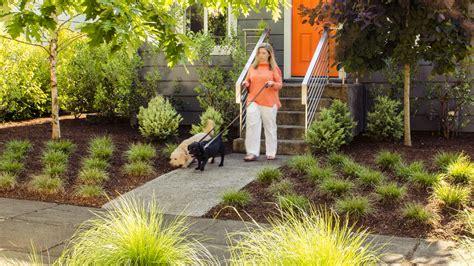 dog friendly backyard landscaping backyard ideas for dogs sunset