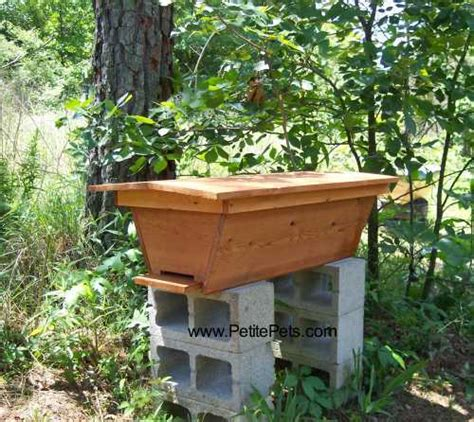 cedar top bar hive cedar top bar hive 28 images 17 best images about top
