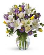 Flower Shops In Biddeford Maine - flower shop maine majestic flower shop biddeford plants