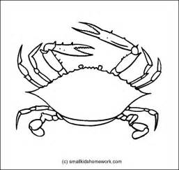 crab outline crab outline picture for coloring
