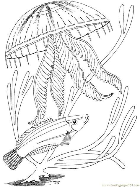 coloring pages ocean fish under ocean fish coloring page free oceans coloring