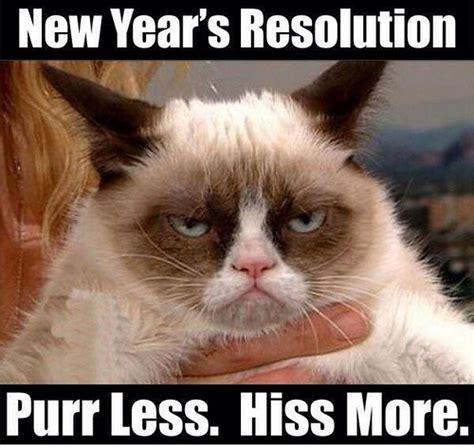 New Grumpy Cat Meme - retail hell underground grumpy cat on the new year